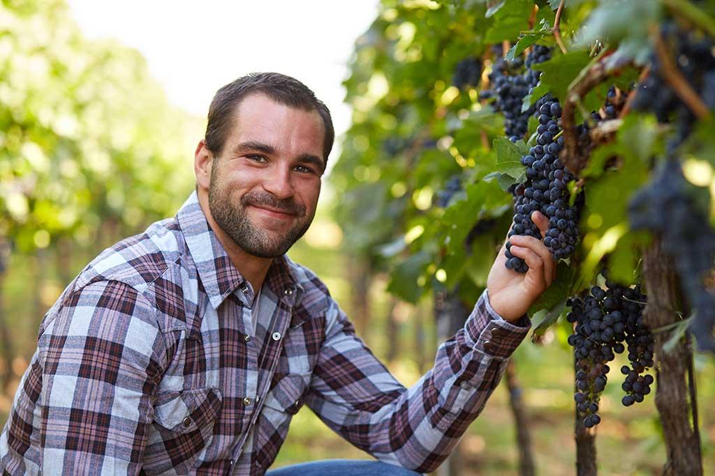 Un exploitant accroupi et souriant dans un rang de vigne, tenant une grappe à la main.