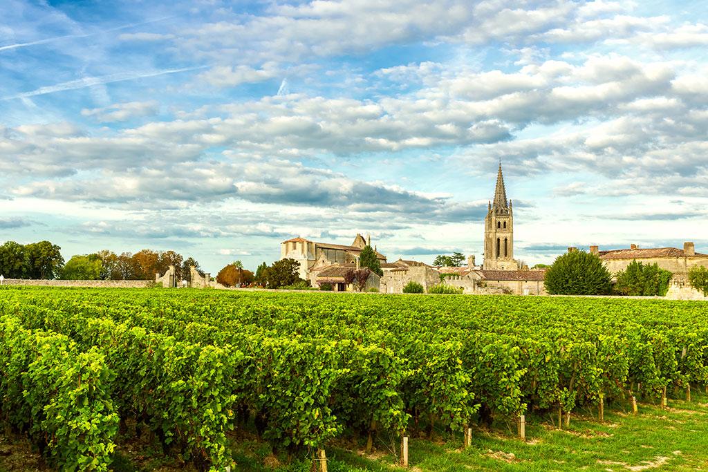 photographie de rangs de vigne devant un village du sud de la France et son église.